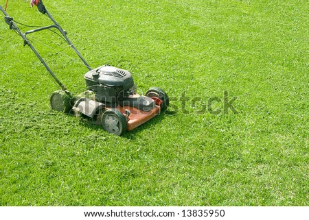 The lawn-mower costs on green a lawn