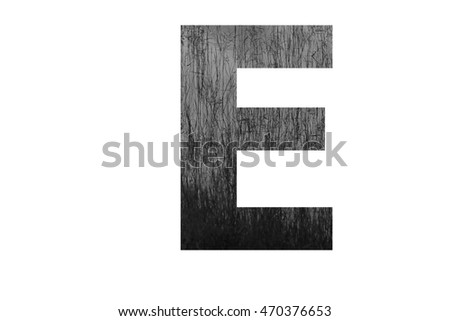 "The letter ""E"" with plantation swamp (black and white) insided"