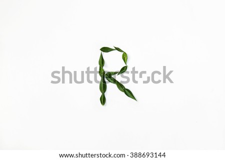 "The letter ""R"" of leaves ruscus"