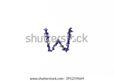 "The letter ""W"" of violet flowers - stock photo"