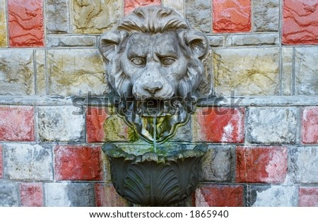 the lion's spring. fragment - stock photo