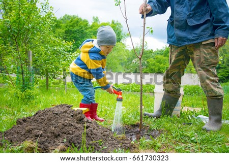 the little boy in the garden, watering the tree planted by strands of sapling from a hose, on a sunny day