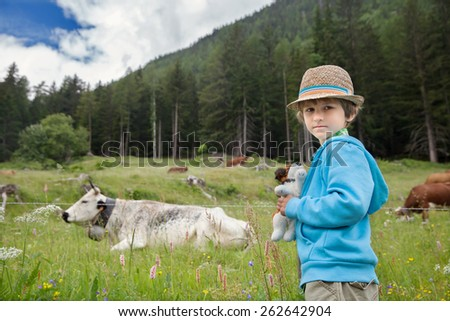 the little boy looks at cow on a green meadow - stock photo
