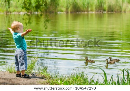 the little boy standing on the bank of the lake and looking at floating ducks