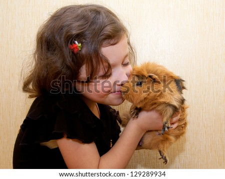 The little girl kissing the guinea pig. Love for animals concept. - stock photo