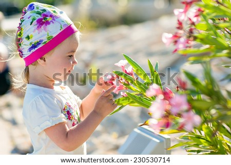 The little girl touches the flowers of the bougainvillea in Cyprus - stock photo
