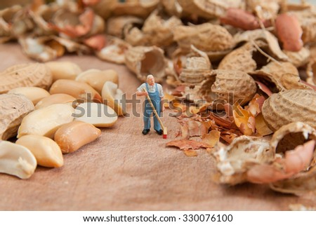 The little man sweeps shell peanuts. The concept of work, keeping order. - stock photo