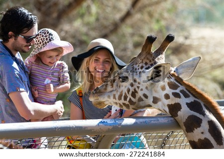 The Living Desert Zoo, Palm Desert, California - February 05 : Tourist family hand feeding a Giraffe at the zoo, February 05 2015 in The Living Zoo, Palm Desert, California. - stock photo