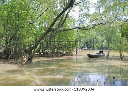 the local fisherman boat in the mangrove - stock photo