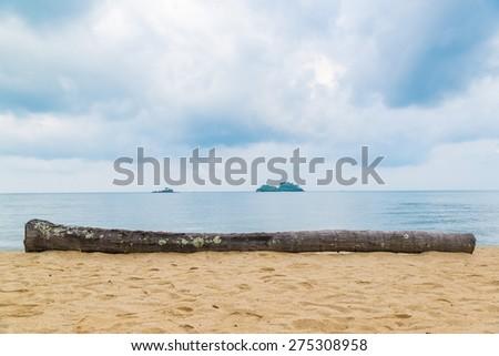 The log on the beach. - stock photo