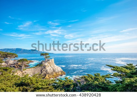 The Lone Cypress, seen from the 17 Mile Drive, in Pebble Beach, California. - stock photo