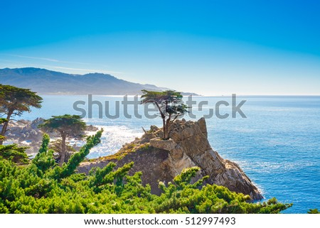 The Lone Cypress, seen from the 17 Mile Drive, in Pebble Beach, California