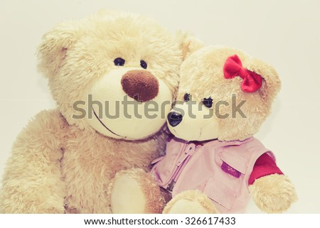 The love of two teddy bear