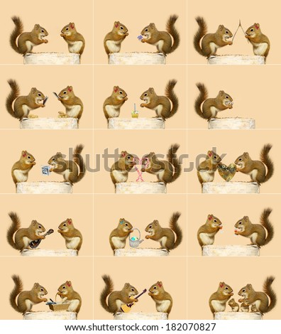 The love story of two little squirrels. A sequence of humorous events, ending with them starting a family.