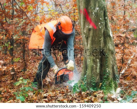 the lumberjack - stock photo