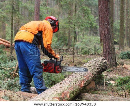 The Lumberjack working in a forest.  - stock photo