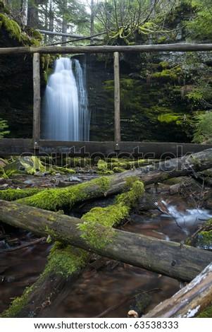 The lush green foliage around Shadow Falls, in north Idaho. - stock photo