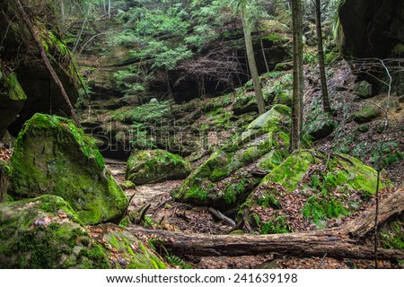 The lush green gorge of Conkles Hollow located in Hocking Hills State Park. Logan, Ohio. - stock photo