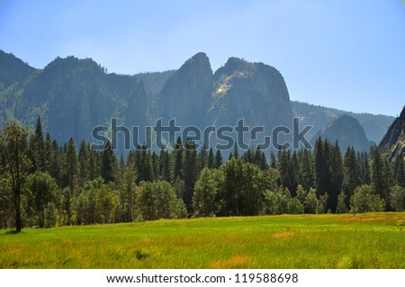 The Lush Meadow in Yosemite National Park