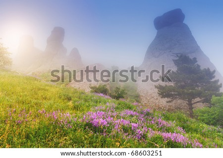 The magic morning in the mountains landscape - stock photo
