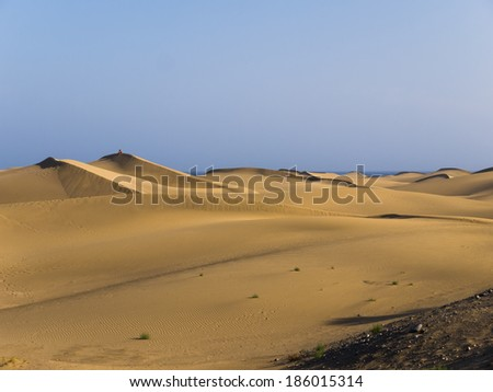 the majestic sand dunes of Maspalomas at the Island of Gran Canaria