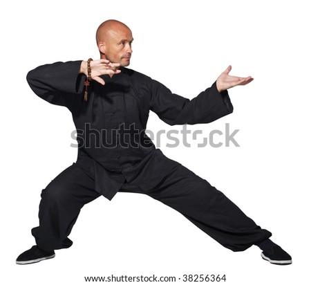 The man does an element tai-chi - stock photo