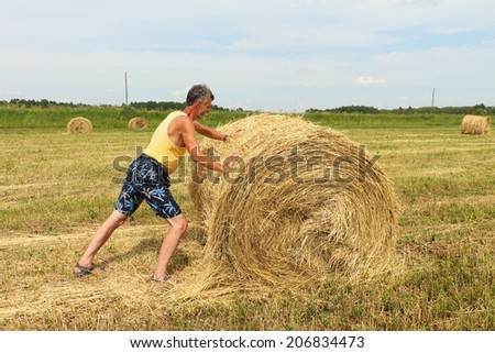 The man with effort a rolling sheaf of straw in the field