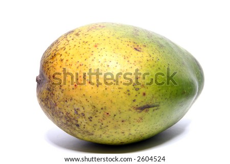 The mango (plural mangos or mangoes) is a tropical fruit of the Mango tree. Mangoes belong to the genus Mangifera which consists of about 35 species of tropical fruiting trees.