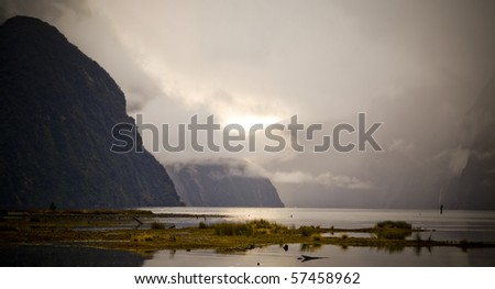 The many moody shades of Milford Sound, New Zealand in the wet.
