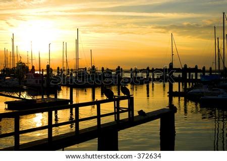 The Marina - stock photo