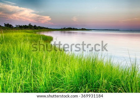 The marshy shores of the Cape Fear River. Fort Fisher Air Force Recreation Area, North Carolina. - stock photo