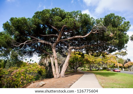 The Marston Point section of Balboa Park in San Diego - stock photo