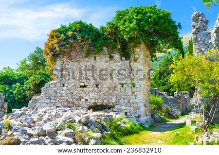 The medieval stone wall covered with the green bushes and flowers, Stari Bar, Montenegro.