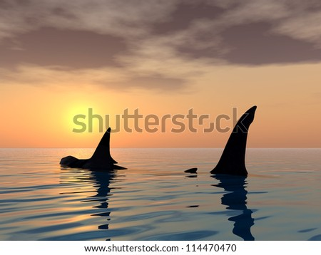 The Megalodon Shark Computer generated 3D illustration - stock photo