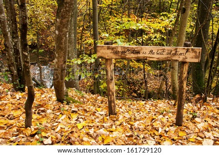 "The message ""Less polution is the best solution"" is written on a wooden placard in the forest to raise awareness of the negative effects of pollution. - stock photo"