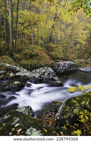 The Middle Prong of the Little River flows peacefully through the autumn landscape of Great Smoky Mountains National Park in the Appalachian Mountains of Tennessee. - stock photo