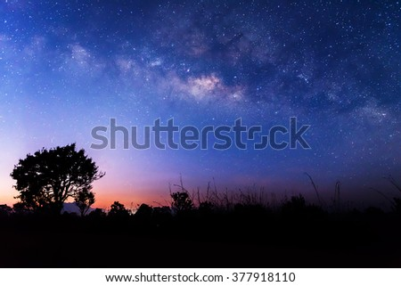 The milky way above a tree before sunrise. - stock photo
