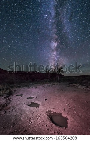 The Milky Way rises over ancient dinosaur tracks left in an old creek bed near Black Mesa, Oklahoma, USA.