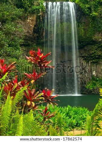 The Millaa Millaa falls in Queensland Australia - stock photo