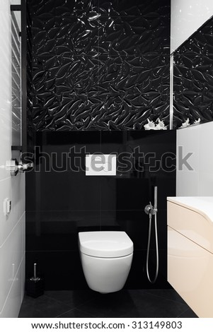 The modern design of the restroom room in black and white colors. Luxury suite