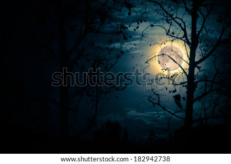 The moon glows brightly on a cold winter night. - stock photo