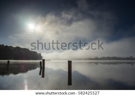 the morning sun on the lake in the forest