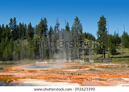 "The most beautiful blue hot spring in Yellowstone park - ""The Blue star spring"""