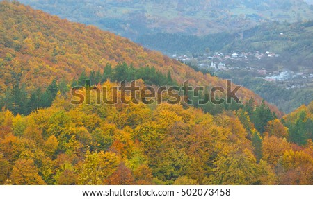 the mountain autumn landscape with colorful forest. Vrancea, Romania