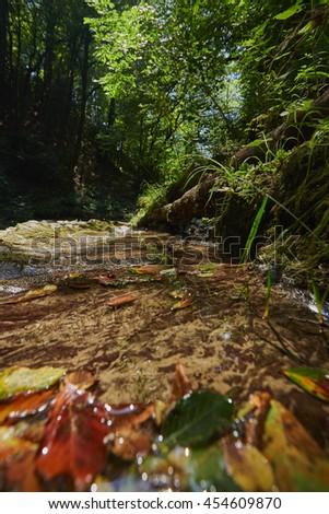 The Mountain Creek of Agva river close to Dream city of Shochi - stock photo