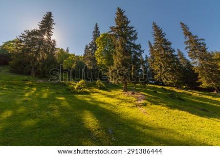 The Mountain landscape in Ukraine.The wallpaper sunlighte - stock photo