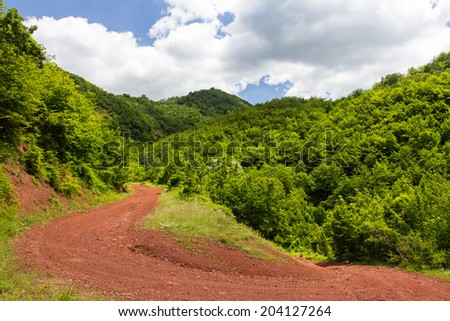 the mountains landscape with road in forest - stock photo