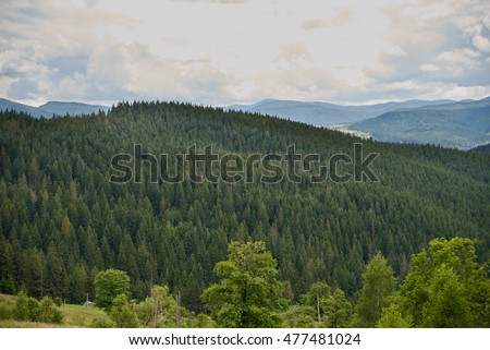 The mountains. Nature. Landscape