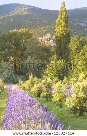 The mountainside village of Poet Laval, Provence, France, viewed from a traditional lavender field on a summer evening. - stock photo
