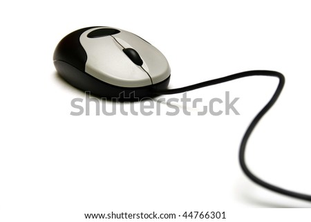 The mouse from a computer